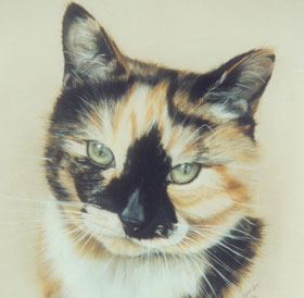 Painting of cats head & Link to pet portrait